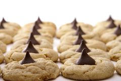 Peanut Butter Blossoms Close up Royalty Free Stock Images