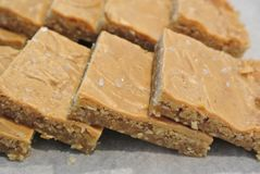 Peanut Butter Brownie Bars. Upclose Peanut butter brownie bars with sea salt stock photography