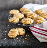 Peanut butter and chocolate chip cookies on a cooling rack Royalty Free Stock Images