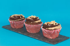 Peanut butter and chocolate cup cakes. Chocolate sponge with peanut butter added to the mix Royalty Free Stock Photos
