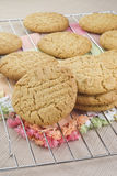 Peanut Butter Cookies Royalty Free Stock Image