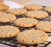 Peanut Butter Cookies Royalty Free Stock Photos