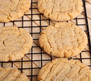 Peanut Butter Cookies Cooling Royalty Free Stock Photos
