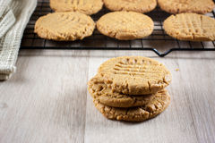 Peanut Butter Cookies. Cooling on a rack Stock Images