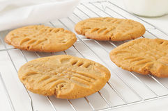 Peanut butter cookies on a cooling rack Royalty Free Stock Photo