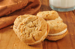 Peanut butter cream sandwich cookies Royalty Free Stock Photo