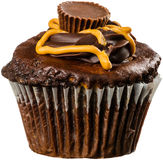 Peanut Butter Cupcake with Swirls of Chocolate Stock Photos