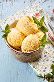Peanut Butter Ice Cream. With mint stock photography