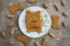 Peanut Butter Oat Dog Treats with Whole Peanuts on a Stone Background. Peanut butter and oat dog treats on a plate surrounded by unshelled peanuts and uncooked Royalty Free Stock Image