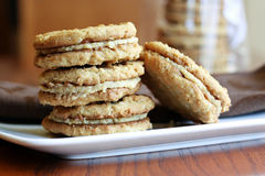 Peanut Butter Sandwich cookies royalty free stock image
