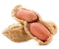 Peanut Stock Photography