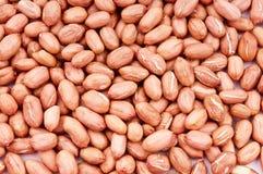 Peanut close up Royalty Free Stock Photo