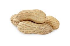 Peanut closeup on a white background. Stock Photos