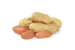 Peanut closeup on a white background. Royalty Free Stock Photos