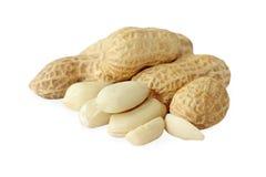 Peanut closeup on a white background. Stock Photo