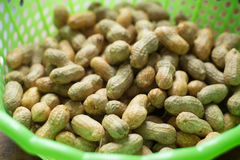 Peanut Royalty Free Stock Images