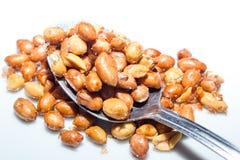 Peanut Royalty Free Stock Image