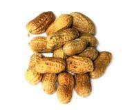 Peanut. Fresh peanut over white background Stock Image