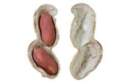 Peanut or groundnut Stock Photos