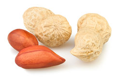 Peanut group Royalty Free Stock Images