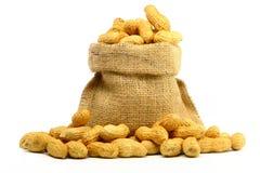 Peanut in Gunny Bag Royalty Free Stock Photo