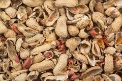 Peanut hulls Royalty Free Stock Image