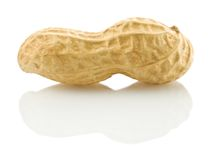 Peanut isolated Royalty Free Stock Image
