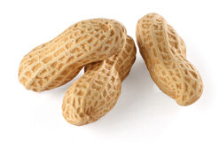 Peanut Royalty Free Stock Image