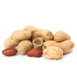 Peanut Royalty Free Stock Photos