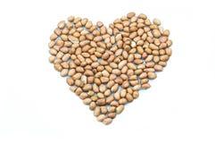 Peanut isolated Royalty Free Stock Image