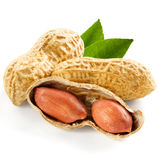 Peanut. Isolated on white background Royalty Free Stock Photos