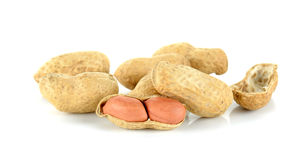 Peanut isolated on the white background Stock Images