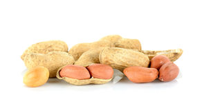Peanut isolated on the white background Stock Image