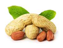 Peanut with leaves isolated on white background Stock Photos