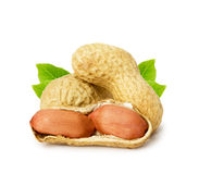 Peanut with leaves isolated on white background Royalty Free Stock Photos