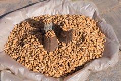 Peanut in local market Stock Images