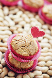 Peanut muffins Stock Image