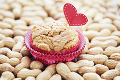 Peanut muffins Royalty Free Stock Photography
