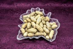 Peanut nut fruit photography China. The peanut bean nut fruit photography in Guangxi of  China Royalty Free Stock Photos