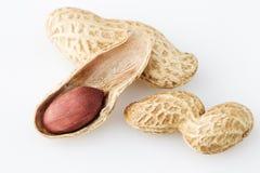 Peanut nut on white background Stock Photo