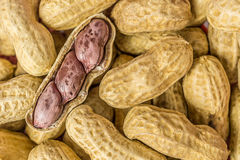 Peanut open shell. On group of peanuts close shell stock photo