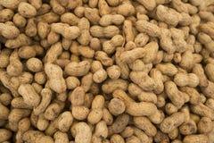 Peanut. Peanuts background. Peanuts seed. Brown peanuts. Stock Photo