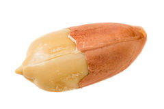 Peanut with peel Royalty Free Stock Image