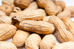 Peanut pile Stock Images