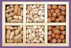 Peanut, pistachio, and hazelnut Stock Photo