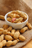 Peanut is raw food for snack. Stock Image