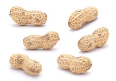 Peanut set Royalty Free Stock Photos