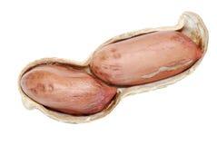 Peanut in shell Royalty Free Stock Photo