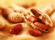 Peanut with shell royalty free stock photo
