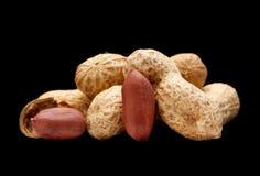 Peanut with shell closeup Stock Photos